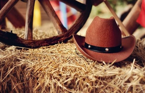 Rodeo Divorce: What Happens to Cattle, Horses & Ranching Assets?
